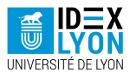 IDEX lyon